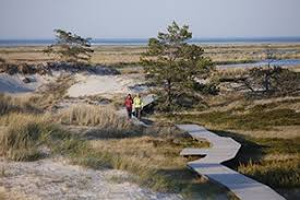 E9 Hiking Trail at the Baltic Sea